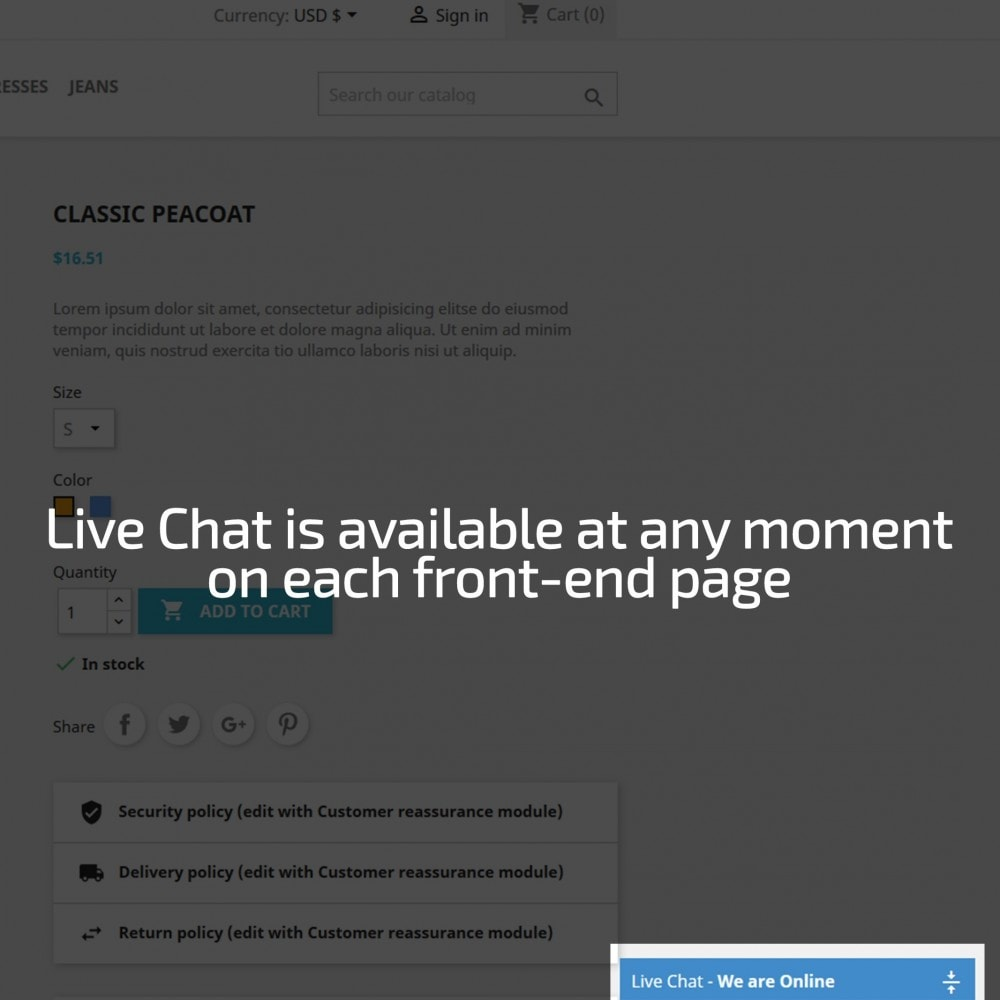 module - Support & Online Chat - AN Responsive Live Chat - 3