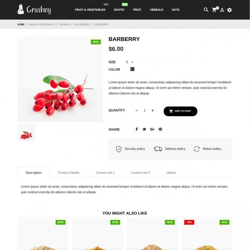 theme - Alimentos & Restaurantes - Grushny - 6