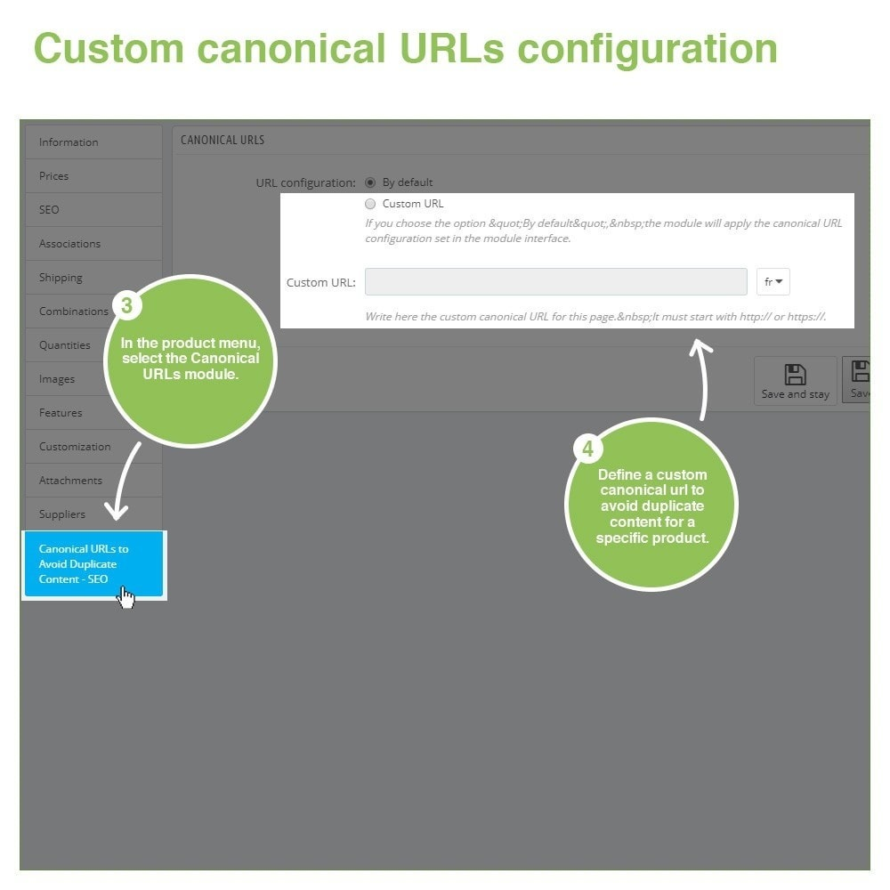 module - URL & Redirects - Canonical SEO URLs to Avoid Duplicate Content - 11