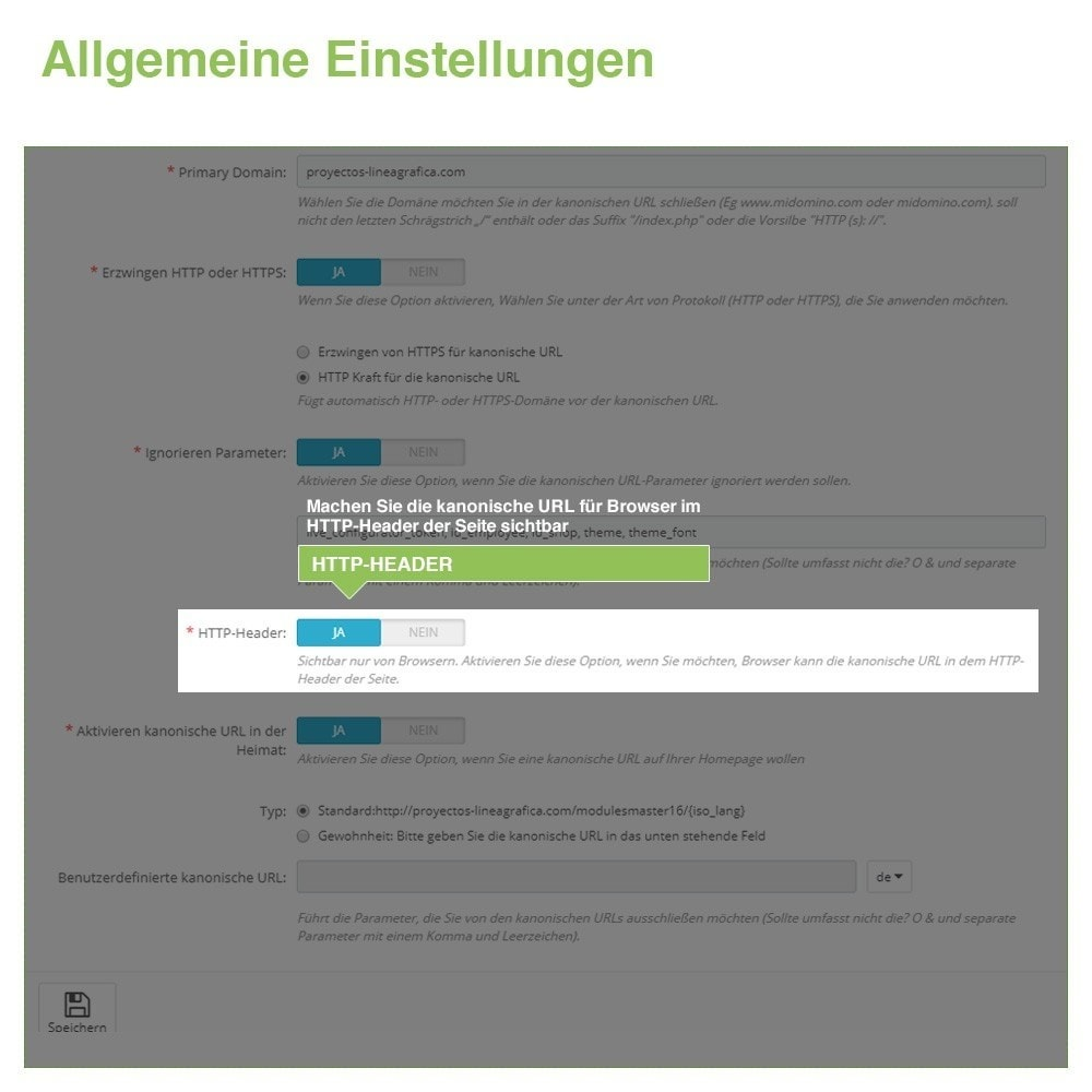 module - URL & Redirects - Kanonische URLs, um doppelte Inhalte zu vermeiden - SEO - 5