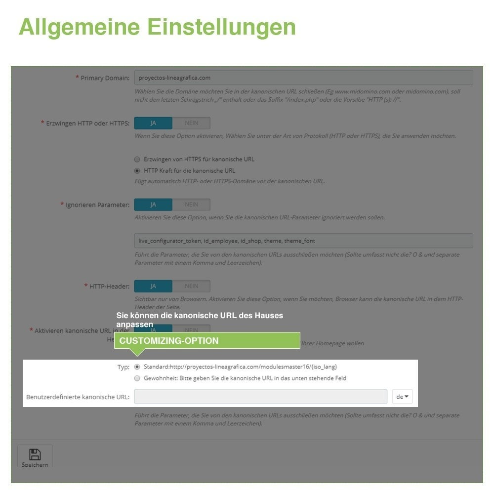 module - URL & Redirects - Kanonische URLs, um doppelte Inhalte zu vermeiden - SEO - 7